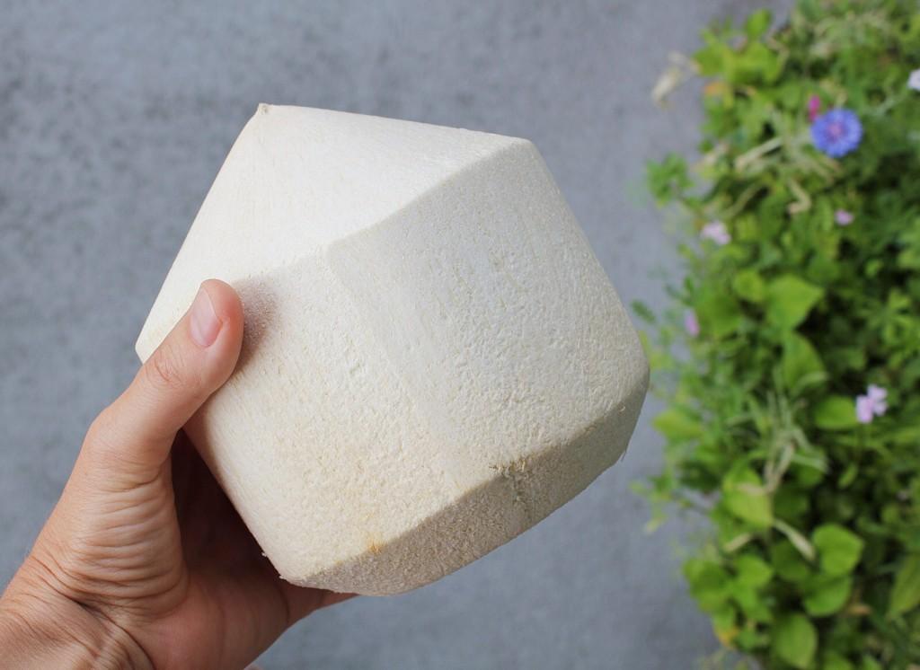Coconut Yoghurt with Raw Peach Chia Jam