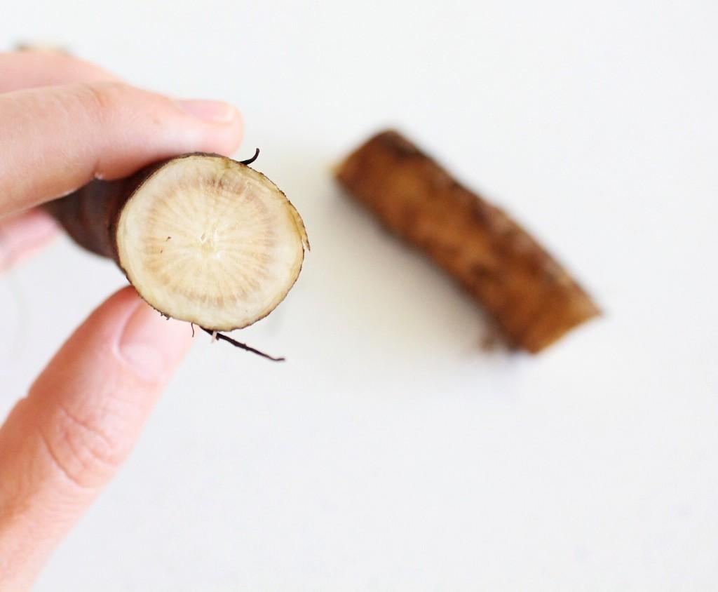 Burdock Root Fire Cider